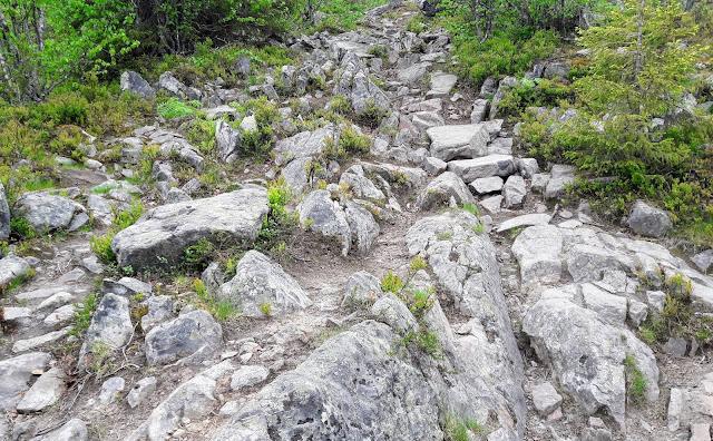 Minkä kokoisia kiviä on Kätkätunturilla Levillä