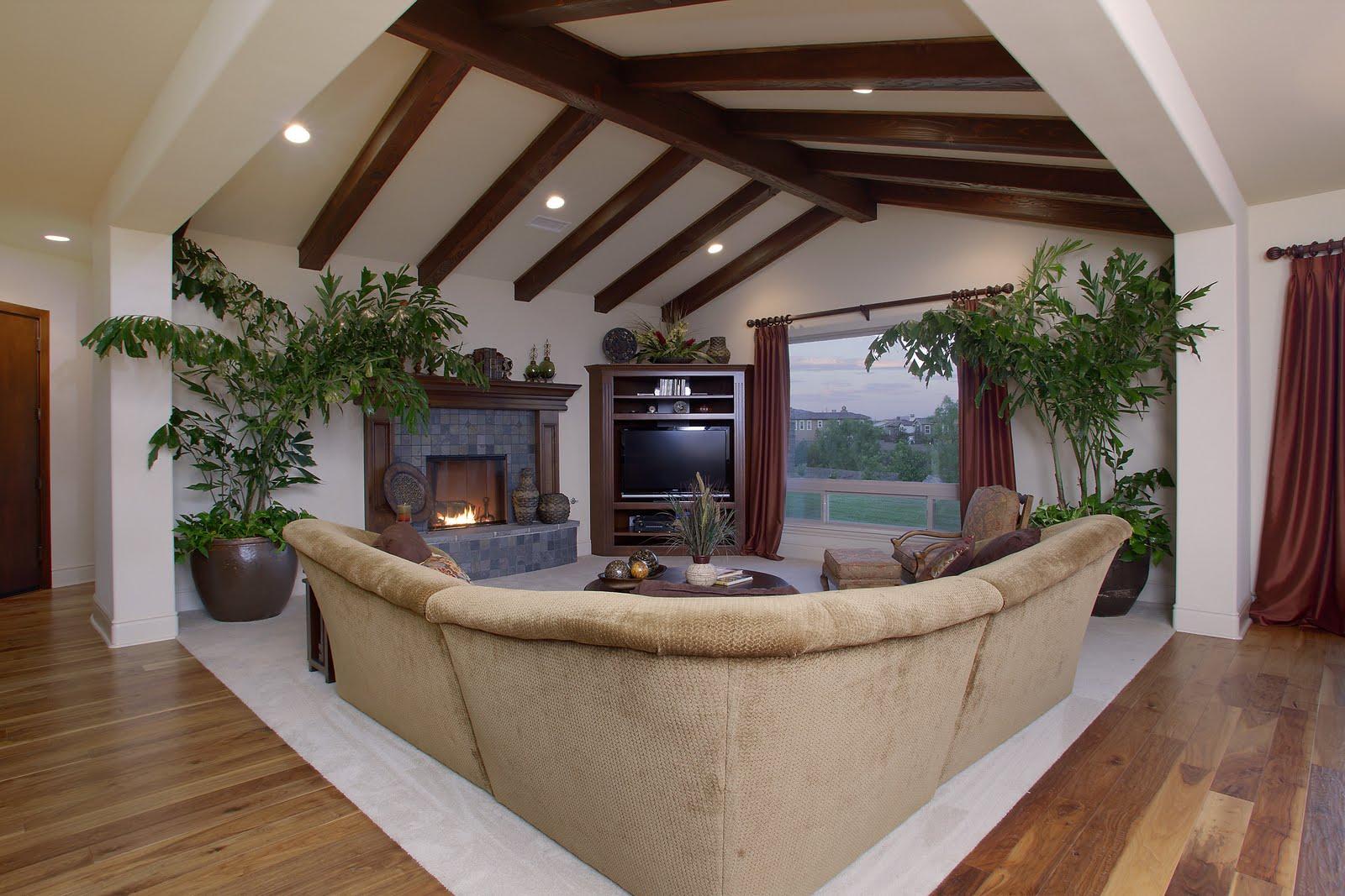 MDD Homes: Open Beam Ceilings