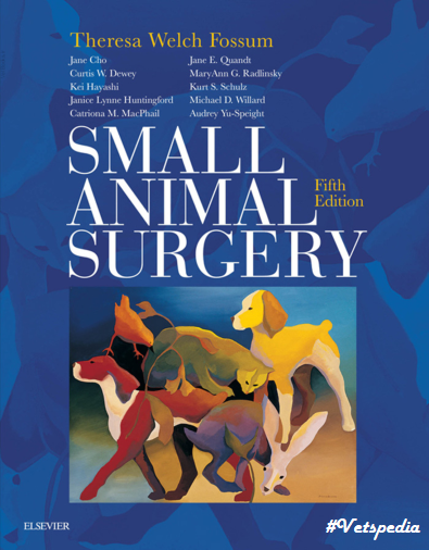 Color Atlas Of Small Animal Anatomy The Essentials Pdf