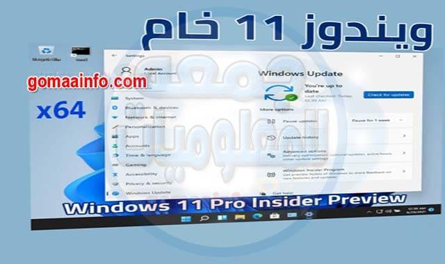 ويندوز 11 برو النسخة الرسمية الخام Windows 11 Pro Insider Preview x64