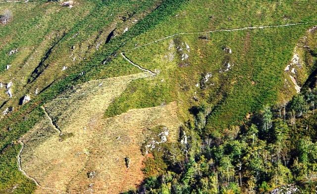 Sendero en las montañas de Covadonga (archivo del autor)