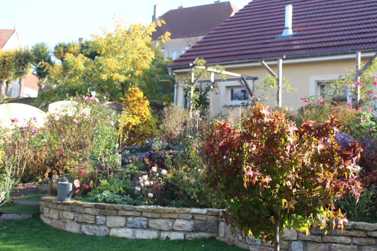 notre jardin secret le jardin sous l 39 oeil d 39 olivier. Black Bedroom Furniture Sets. Home Design Ideas