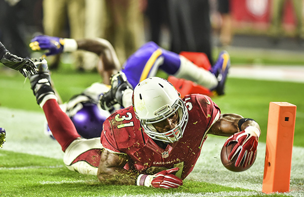 Arizona Cardinals NFL