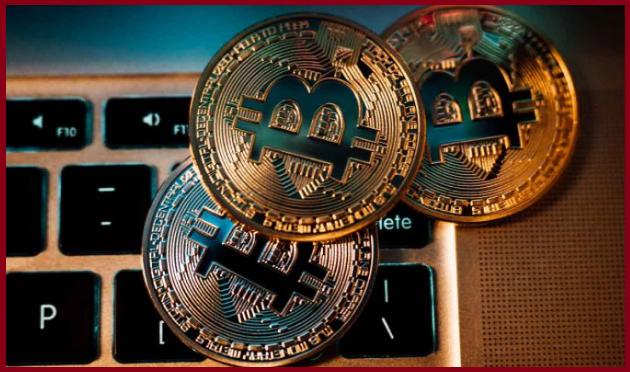 NetNewsLedger - guaranteed Bitcoin earning ideas with worldfree4u.site