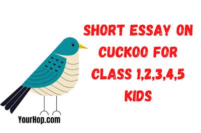 Essay on Cuckoo