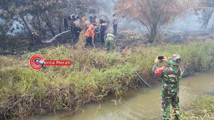 Selama Dua Hari Kebakaran Lahan Gambut di Mesuji Masih Belum Terpadamkan