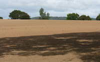 Avoiding bare fields can increase soil carbon storage. (Image Credit: Whatlep, via Wikimedia Commons) Click to Enlarge.