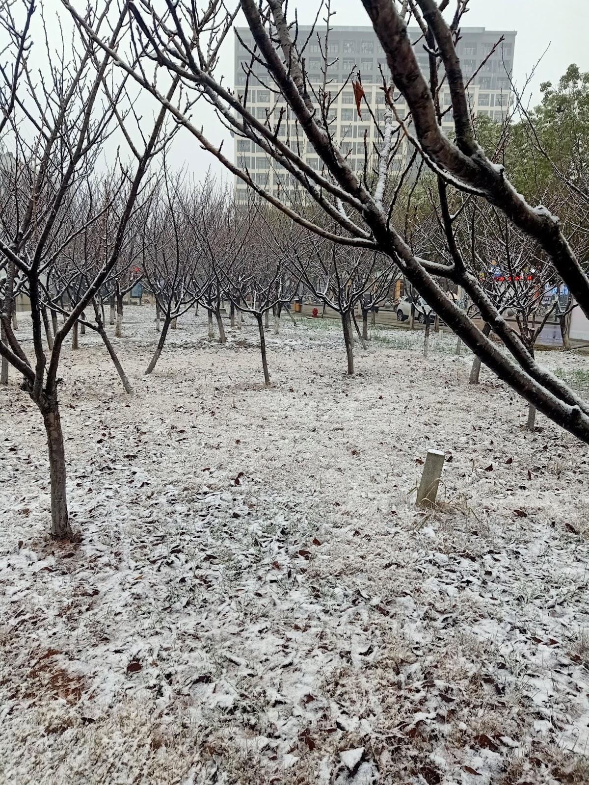 Tahun Baruan di BAIJIAHU 百家湖站 - Rsjournal