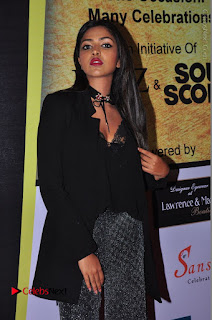 Actress Amala Paul Stills in Black Dress at South Scope Lifestyle Awards 2016 Red Carpet  0082.JPG