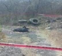 Hallan dos cuerpos ejecutados en Ixtlan Michoacan