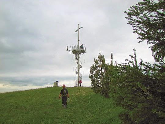 Szczyt Grzywackiej Góry (567 m n.p.m.).