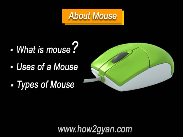 All about Computer Mouse