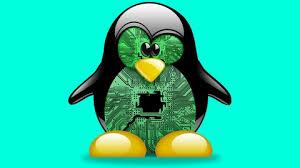 50% off Der perfekte Linux Server für Web, Mail, FTP und Domains