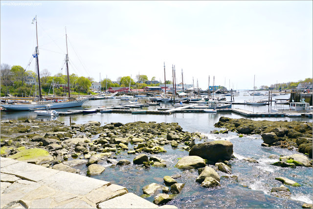 Puerto de Camden, Maine