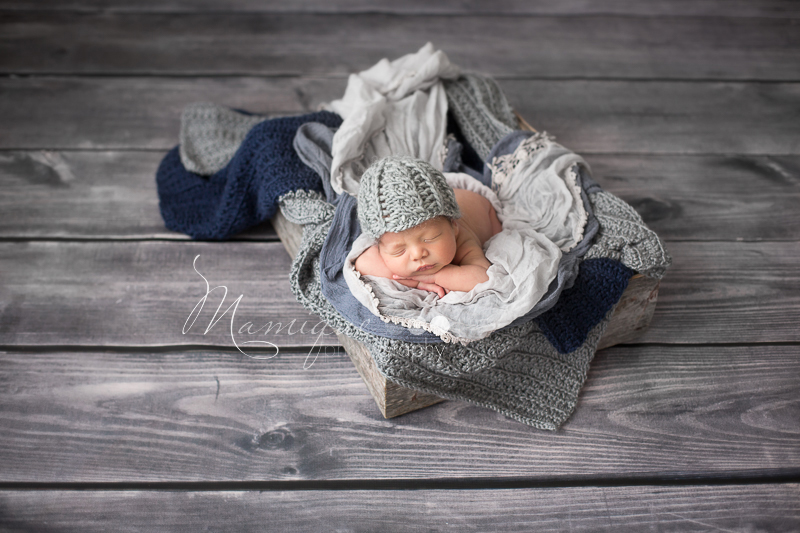Newborn boy cozy in a basket in grey blanket