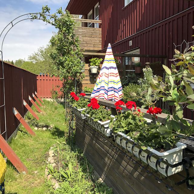 trädgård och uteplats
