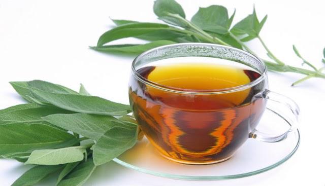 Conheça benefícios ao consumir o chá de Guaco regularmente.