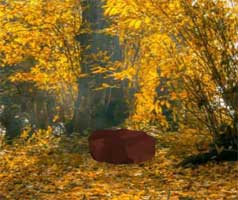 Juegos de Escape - Easy Yellowish Forest Escape