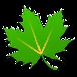 Download Game Unduh Greenify Apk Pro terbaru v2.8.1 2016 + Pengaturan