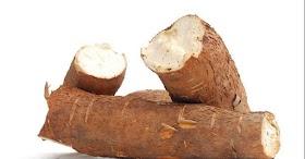 木薯有毒嗎?吃木薯會中毒身亡嗎?吃木薯留意2原則