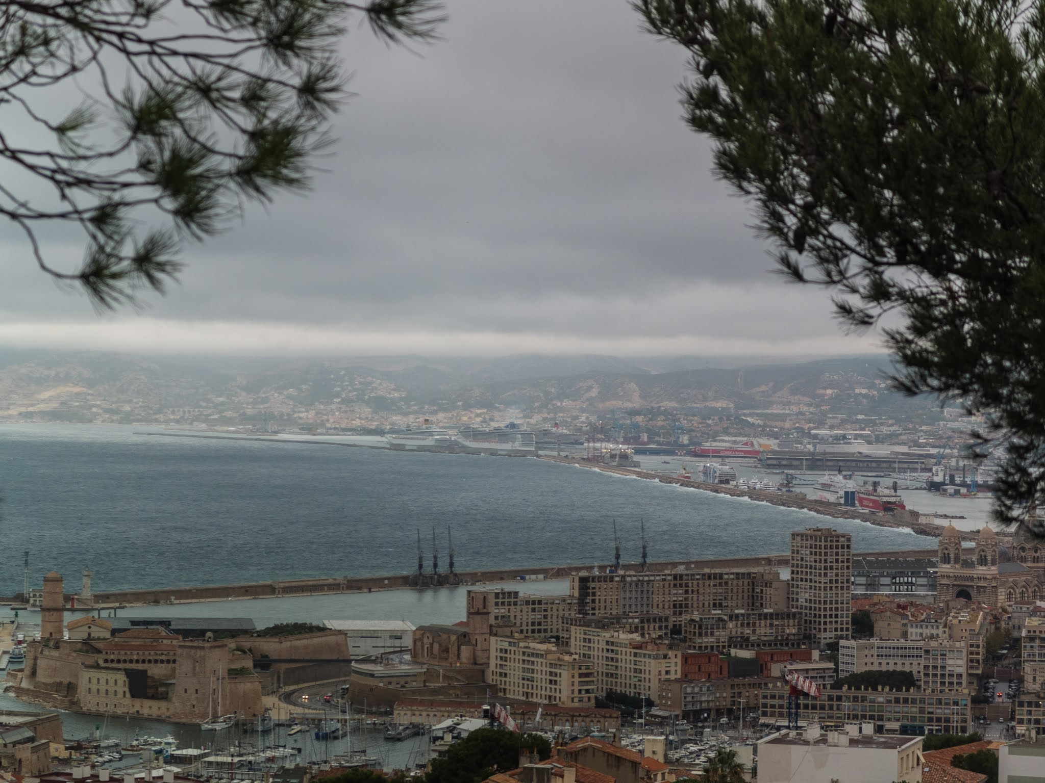 View of the port of Marseille under pine trees on La Garde Hill.