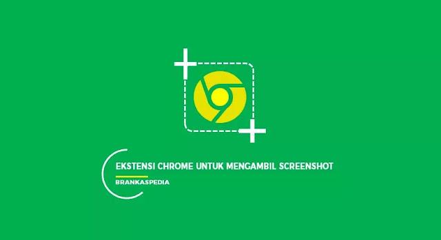 ekstensi chrome untuk mengambil screenshot