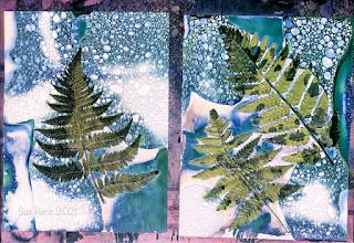Wet cyanotype_Sue Reno_image 818