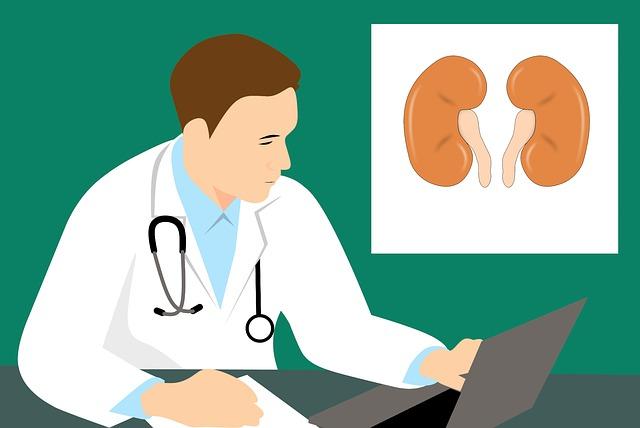 Gejala Penyakit Ginjal - Cara Mendeteksi dan Ciri Ciri Penderita