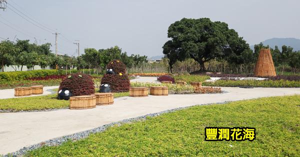《台中.太平》台中花博城市綠廊|豐潤花海|西河堤綠地|枇杷特色