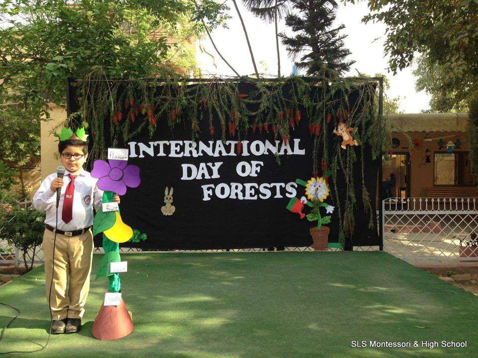 International Day of Forests Wishes Beautiful Image