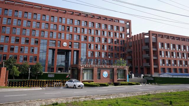 El laboratorio de Wuhan admite tener tres cepas vivas de coronavirus de murciélago, pero insiste en que ninguna es la fuente de la pandemia