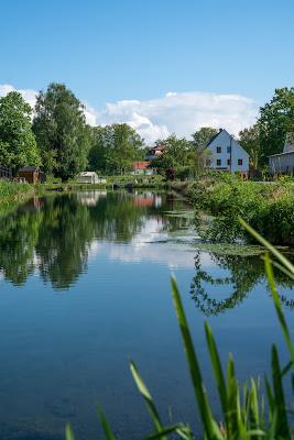 Premiumwanderweg DonAUwald | Etappe 3 von Gundelfingen nach Dillingen 17