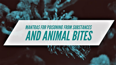 Hindu Tantric Spells for Poisoning from Substances and Animal Bites