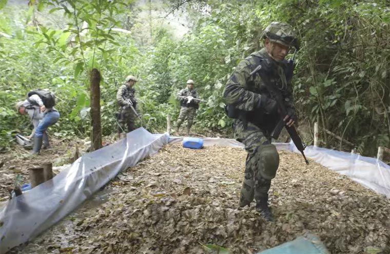 Resultado de imagen para EXPONEN MODELO ANTIDROGA BOLIVIANO EN REUNIÓN DE EXPERTOS DE LA OEA