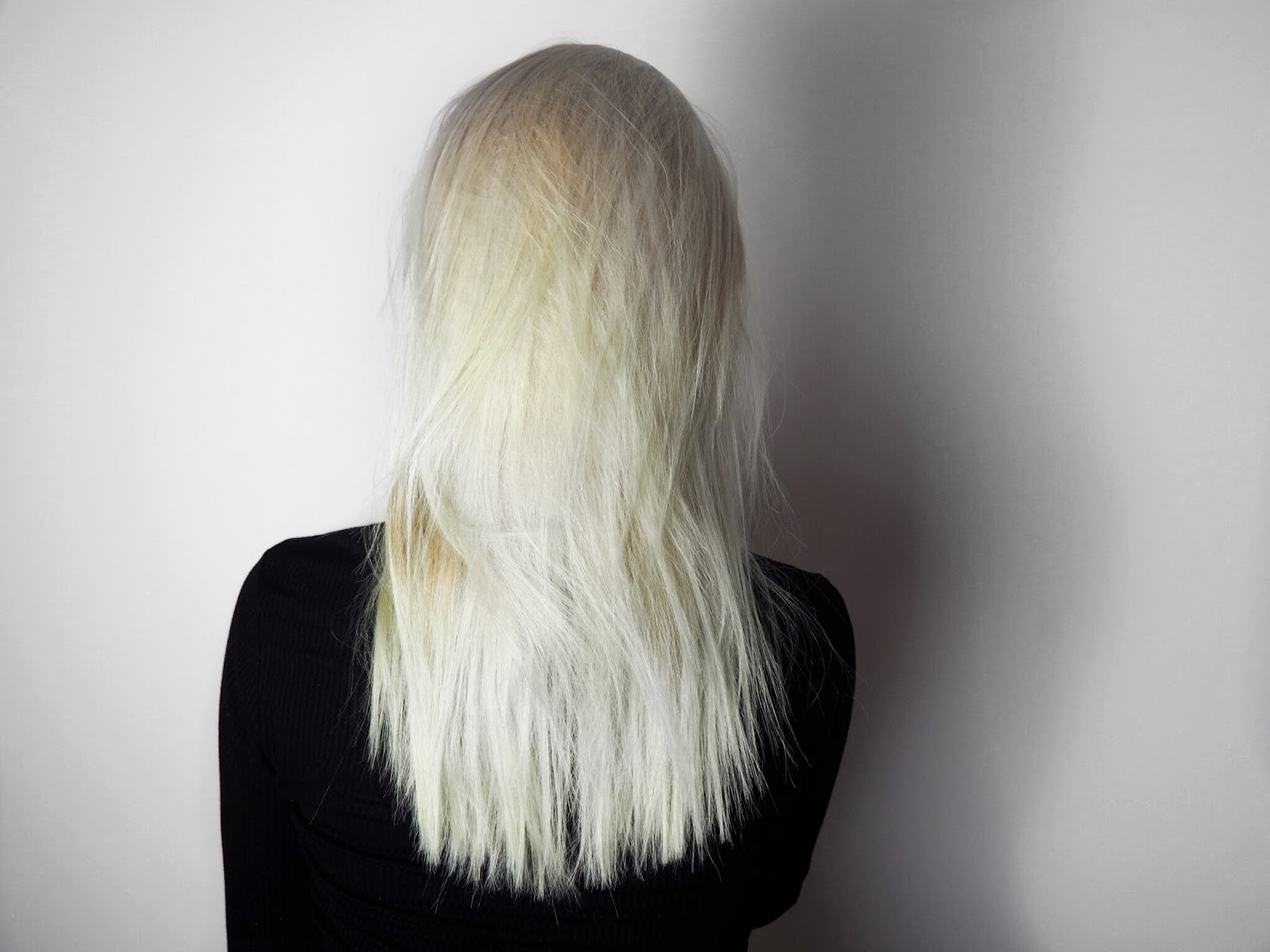Bleach London White Toner and Silver Shampoo