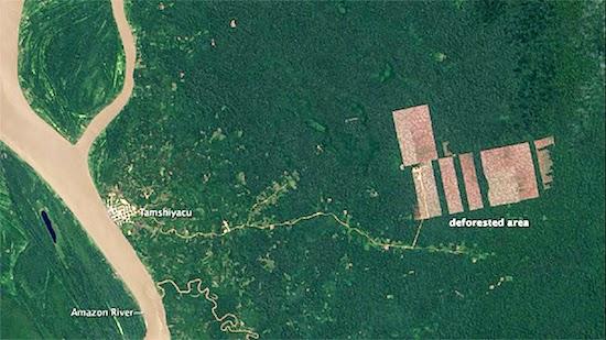 deforestacio2n nasa conjugando adjetivos
