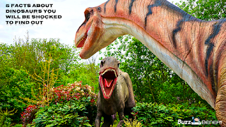 5 Facts About Dinosaurs You Will Be Shocked To Find Out