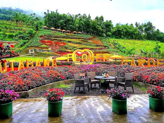 Lokasi dan Harga Tiket Masuk Kutabawa Flower Garden Purbalingga Terbaru