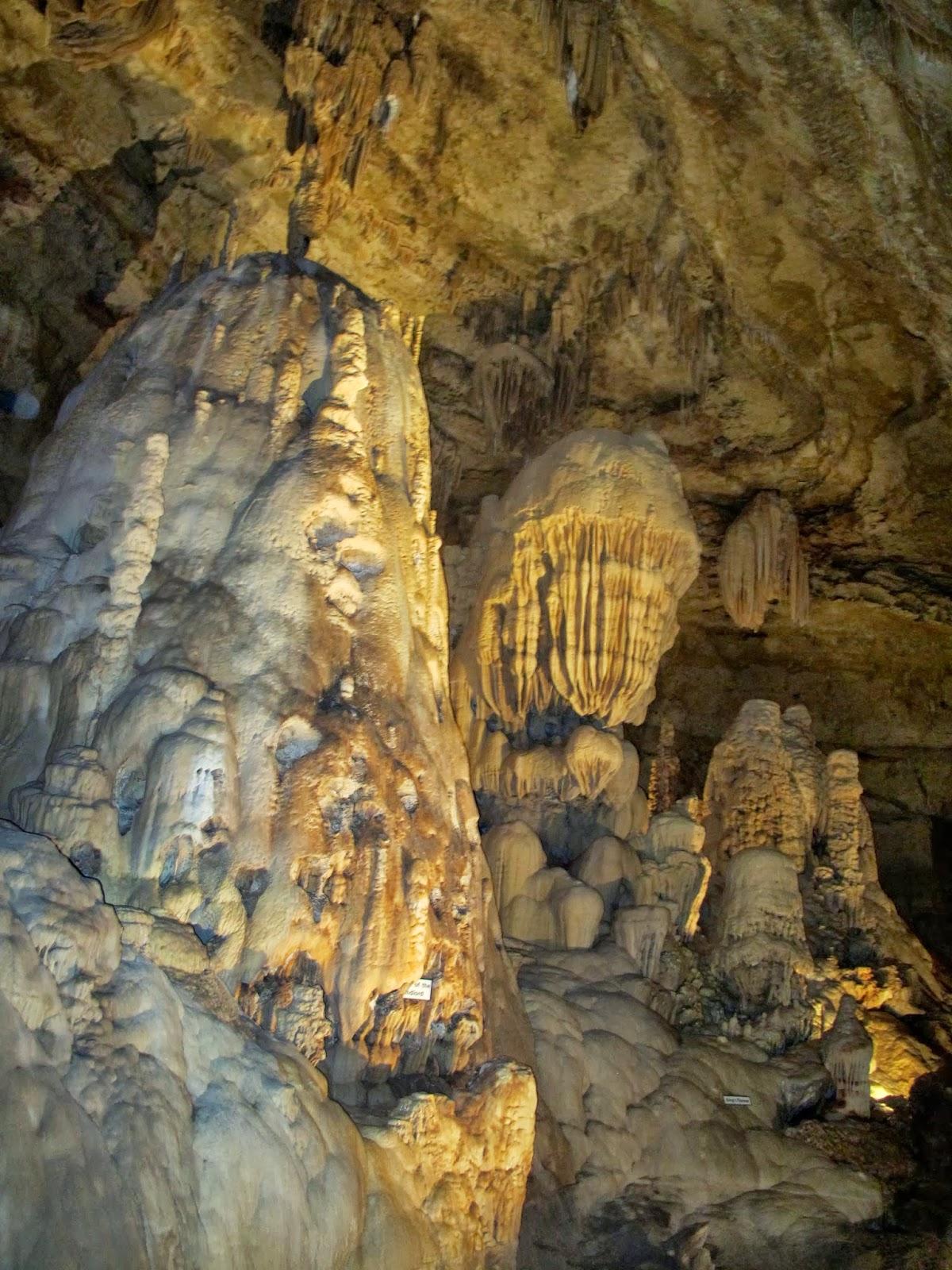 Natural Bridge Caverns Wildlife Park