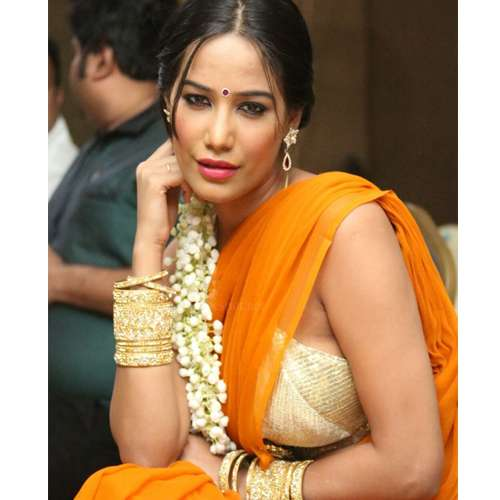 Poonam-Pandey-in-saree