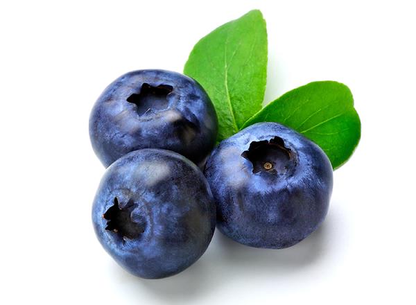Lotion Blueberry untuk Mencegah Penuaan