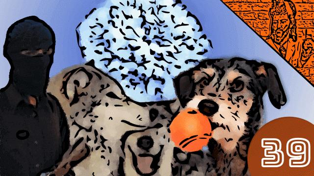 QN NEWS #39 - Estrelas de Neutrons, cães, Talibã e a Somália - Queimando Nerônios