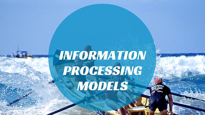 Customer information processing model