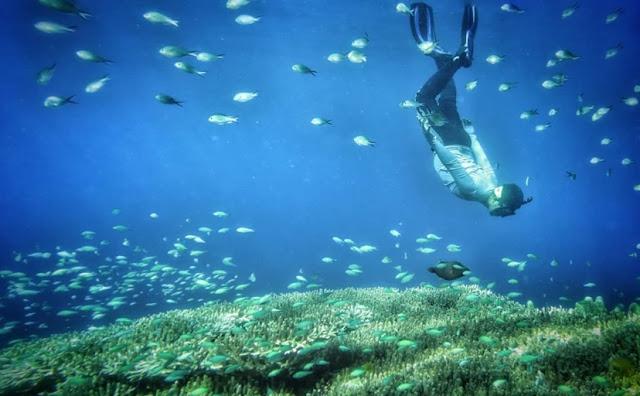 Wisata di Bone Bolango Taman Laut Olele