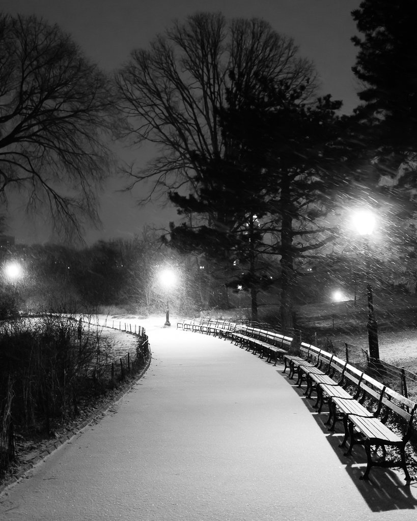 a photo of snow on a path in central park at night