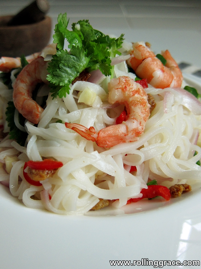 Spicy Thai flat Noodles