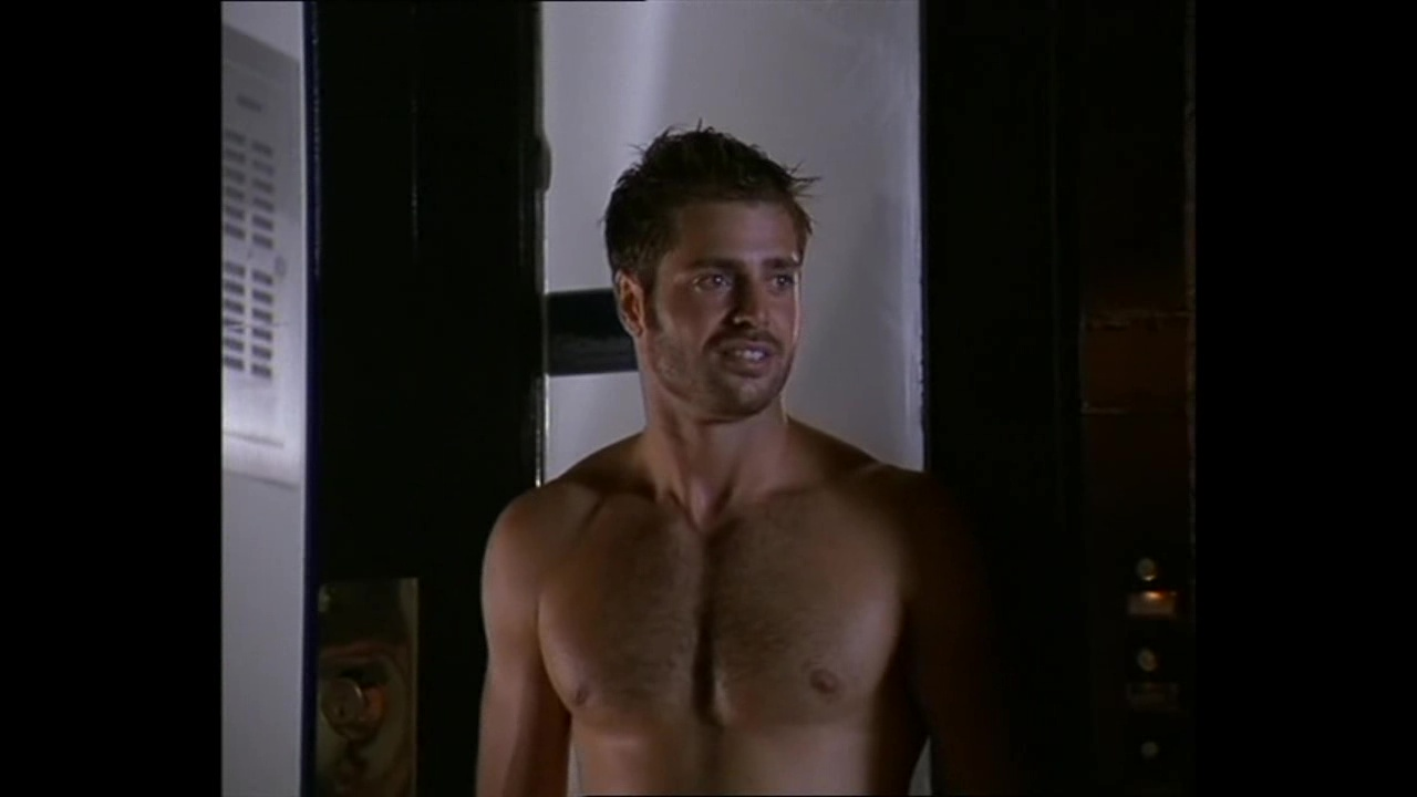 Giovanni Ribisi Naked auscaps: david charvet nude in meet prince charming