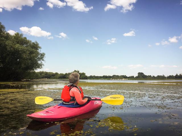Lacul cu Cotete, Delta Dunarii