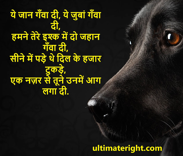 2021 BEST EVER SAD SHAYARI YADE STATUS