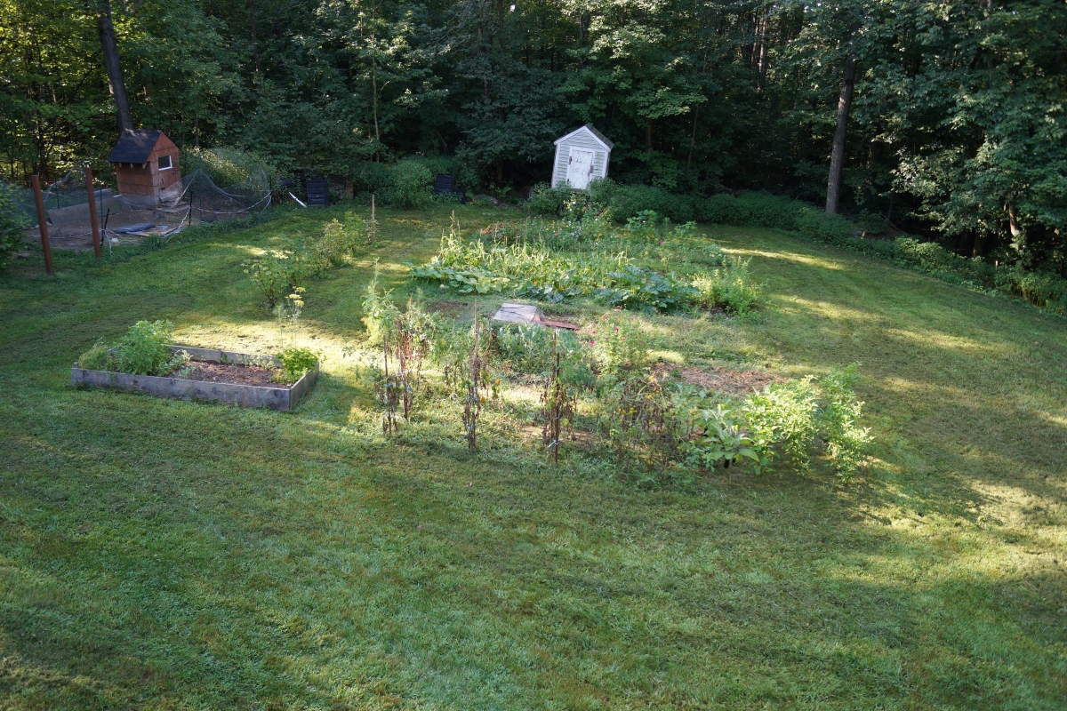 sunshine in my der garten im august 2013. Black Bedroom Furniture Sets. Home Design Ideas